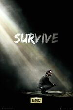 The Walking Dead Survive Poster - NEW & OFFICIAL