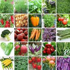 48 Types Survival Heirloom Vegetable & Fruits Seeds Garden NON GMO Organic Plant