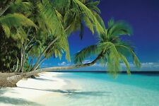 New Maldives Beach and Sea Palm Trees on a Tropical Island Paradise Poster