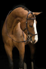 Rambo Micklem Competition Bridle (No reins)