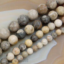 """Natural Coral Fossil Gemstones Round Spacer Beads 15"""" 6mm 8mm 10mm 12mm"""