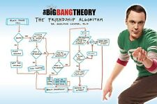 New The Big Bang Theory The Friendship Algorithm TBBT Poster
