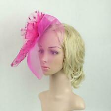 Floral Dot Feather Mesh Fascinator Hat on Clips Derby Race 1920s Hair Accessory