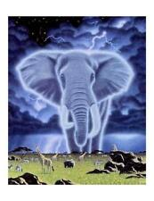 Custom Made T Shirt Gorgeous Elephant Amazing African Animals Beautiful