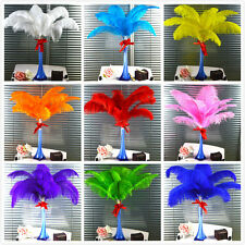 Wholesale 10pcs-100pcs High Quality Natural OSTRICH FEATHERS 6-28'inch/15-70cm