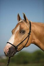 Don't Be Naughty Halter Horse Training Halter - 3 Colors Available NEW