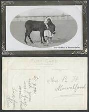 St. Annes-on-Sea The Pier Pier Girl Child & Donkey on Beach Pier Old RP Postcard