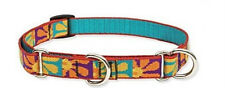 "Lupine COMBINATION or Martingale Dog Collar 3/4""x 2 sizes-Crazy Daisy"