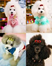 Hot Pet Dog Hair Bows Clips Princess Doggie Boutique sunglasses Dog Accessories