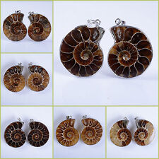 31-43mm  Two matching ammonite fossil twins pendant *each pair photoed*