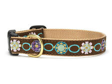 ANY SIZE - UP COUNTRY - MADE IN USA - DESIGNER DOG COLLAR - SPARKLE