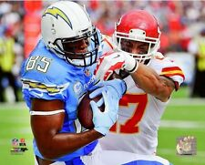 Antonio Gates San Diego Chargers 2014 NFL Action Photo RJ156 (Select Size)