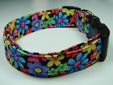 Charming Black, Blue, Pink, Green, Yellow, Daisies Flowers Dog Collar