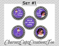 Bottle Cap Magnets/Set of 5/ Esmeralda Inspired/Packaged Gift /Quotes /Esmerelda
