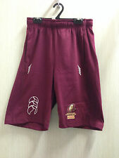 New QLD State of Origin Replica Training/Sweat Pants NRL RugbyLeague