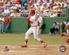 Keith Hernandez St. Louis Cardinals Licensed Fine Art Prints (Select Photo/Size)