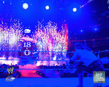 The Undertaker WWE Action Photo MF216 (Select Size)