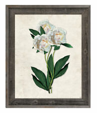 Click Wall Art 'White Carnations Paper' Framed Graphic Art