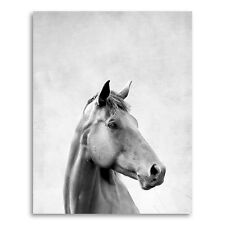 Coco and James Animal Prints Horse in Portrait Format Paper Print