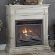 Duluth Forge Dual Fuel Ventless Natural Gas / Propane Fireplace