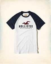 Hollister Men short sleeve Colorblock Logo T-shirt size M , L new with tags