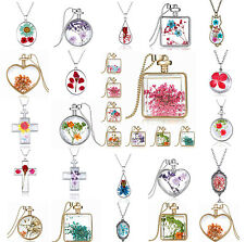 CH Creative Real Natural Dried Flower Glass Drop Pendant Chain Necklace Gift
