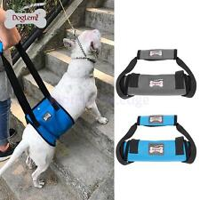 Dog Rehabilitation Lift Harness Mobility Support Vest Harness Collar with Handle