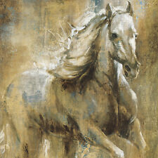 Home Decor HD Print Animal art oil painting on canvas (No stretch) Horse ht016