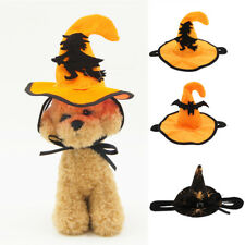 Pet Halloween Hat Cat Dog Witch Cap with Bat/Spider Decor Party Costume Headwear