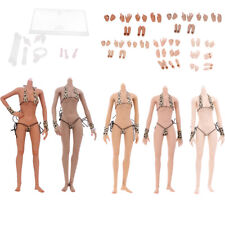 1/6 Scale Female Acion Figure 12inch Action Figure Body Toys Middle Chest