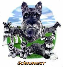 SCHNAUZER DOG T-SHIRT IN COLORS WS721