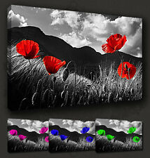 POPPIES FIELD FLORAL GREY RED CANVAS PRINT MANY COLOURS & SIZES TO CHOOSE FROM