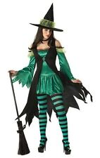 Wizard of Oz Emerald Witch Adult Halloween Costume
