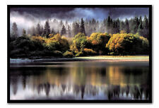 Framed Forest Autumn Colours Poster Ready To Hang - Choice Of Frame Colours