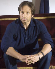 DAVID DUCHOVNY PHOTO CALIFORNICATION PHOTO OR POSTER