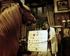 REX HARRISON DOCTOR DOLITTLE TEACHING HORSE PHOTO OR POSTER