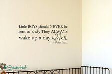 Little Boys Should Never Be Sent Vinyl Wall Art Lettering Decals Stickers 1623