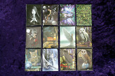 Lisa Parker /Anne Stokes Fridge Magnets  Wicca Pagan Spells