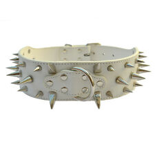 White Color Spiked Studded Collar 2''Wide Croc Leather Dog Collar Large Pitbulls