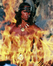 ARNOLD SCHWARZENEGGER CONAN THE BARBARIAN DRAMATIC BY FIRE PHOTO OR POSTER