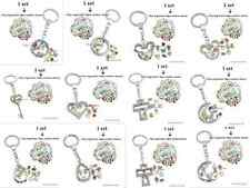1 set various style copy stainless steel key ring floating locket with 10 charms