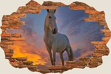 3D Hole in Wall Horse In Sunset View Wall Sticker Mural Art Decal Wallpaper 1116