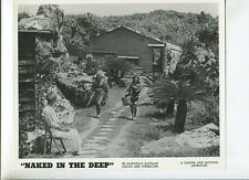 Naked In The Deep 9  1962 Sexploitation original press photo MBX92