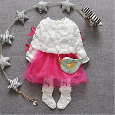 New Baby Girls Clothing Set Lace Embroidered Top + Dress 2 Pcs/Set Outfit
