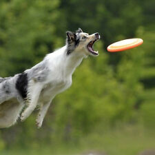 Pet Dog Frisbee Flying Floatable Natural Rubber Disc for Play Training Toy