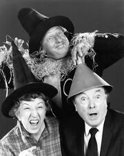 The Wizard of Oz Ray Bolger Bert Lahr Poster or Photo