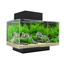 Fluval EDGE 6 Gallon Glass Aquarium Set with LED Lighting System