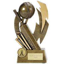 """CRICKET Trophy 6.75"""" / 7.75"""" FREE ENGRAVING Personalised Engraved Award NEW"""