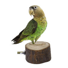 Dia. 6/8/10cm Round Wood Parrot Bird Cage Perch Stand Play Hanging Place PICK