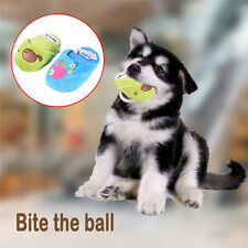 Cute Pet Puppy Plush Slipper Shape Chew Play Squeaky Dog Toy Squeaker Sound Hot